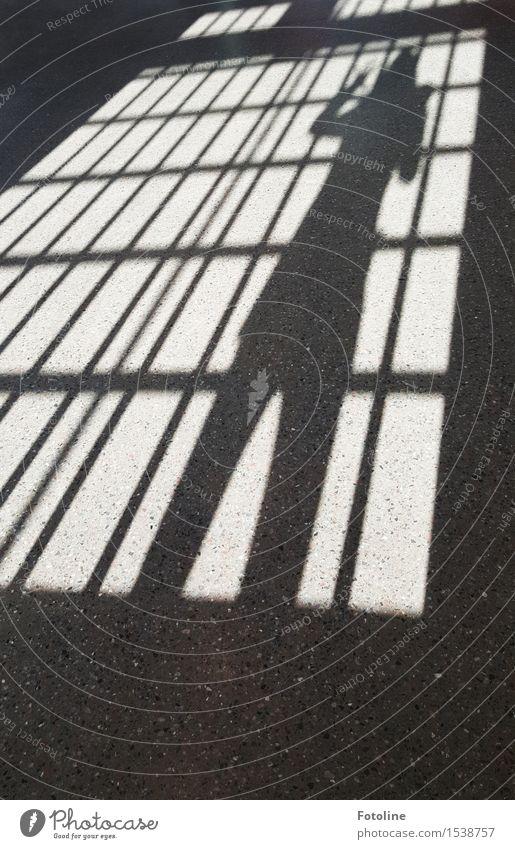 Hinter Gittern Mensch schwarz weiß gefangen Justizvollzugsanstalt Schwarzweißfoto Innenaufnahme Textfreiraum unten Tag Licht Schatten Sonnenlicht