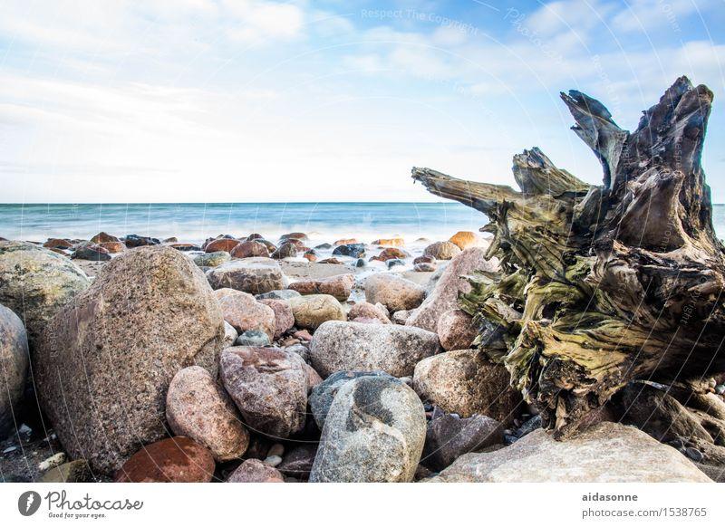 ostsee Natur Wasser Landschaft ruhig Zufriedenheit Lebensfreude Schönes Wetter Ostsee geduldig achtsam