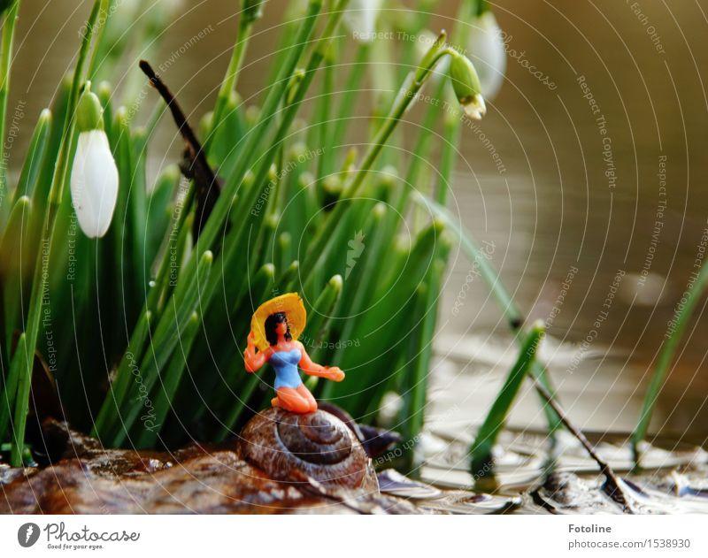 Remixcase | Badetag Natur Pflanze Wasser Blume Umwelt Frühling Blüte natürlich feminin Garten hell nass Schönes Wetter Urelemente nah Spielzeug