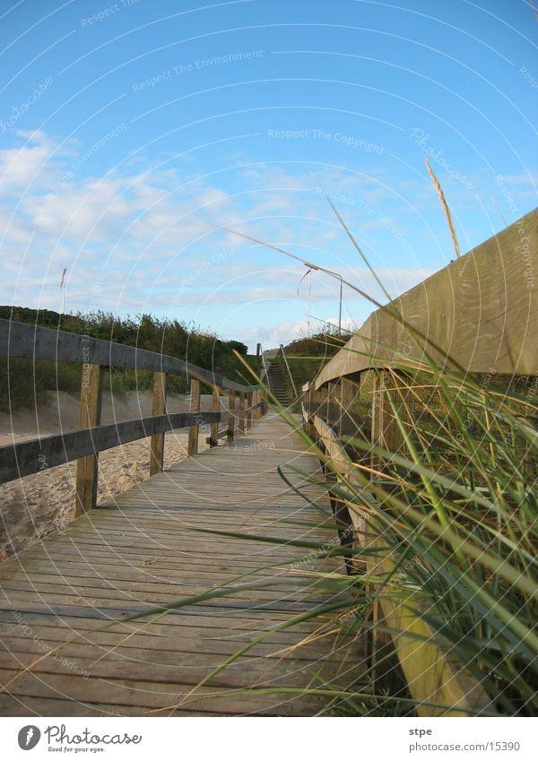 Steg Meer Steg Stranddüne Nordsee Dänemark