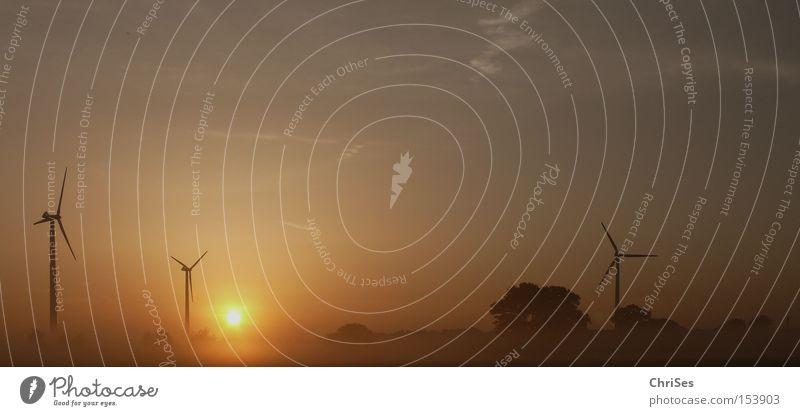 Morgens um 5.36 Windkraftanlage Nebel Sonnenaufgang Tragfläche Elektrizität Energie Erneuerbare Energie Geothermisches Kraftwerk ökologisch Triebwerke Horizont