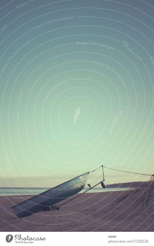 Leinenpflicht Natur Ferien & Urlaub & Reisen Wasser Meer Erholung Einsamkeit ruhig Strand Winter kalt Leben Gefühle Küste Freiheit Stimmung Wasserfahrzeug