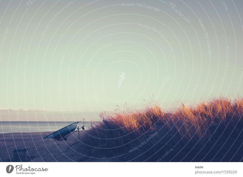 Abendlichter Himmel Natur Ferien & Urlaub & Reisen Wasser Meer Erholung Einsamkeit ruhig Strand Winter Leben Gefühle Gras Küste Freiheit Stimmung