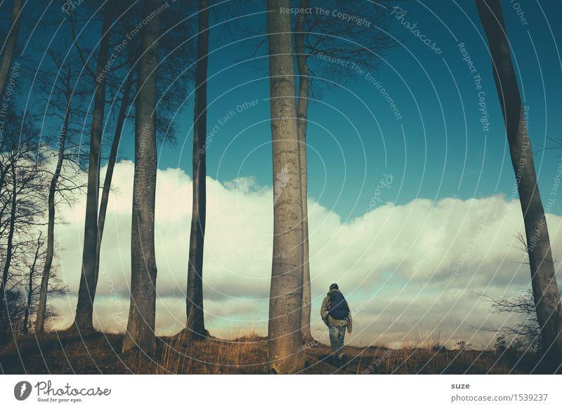 Sucht | das Meer Mensch Himmel Jugendliche Mann blau Baum Junger Mann Meer Einsamkeit Wolken ruhig Erwachsene Küste Freiheit Stimmung Horizont