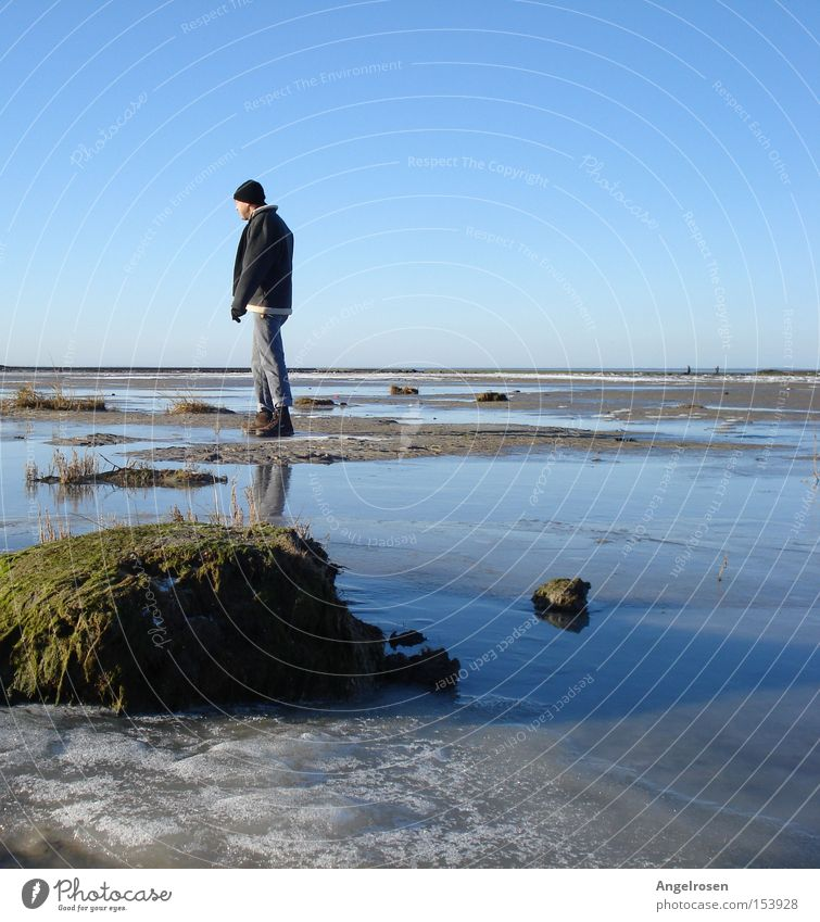 Winterstarre Mann Wasser Winter Strand kalt Erwachsene Küste Eis Frost Nordsee Blauer Himmel Wattenmeer Meer Ebbe Wattwandern Niedrigwasser