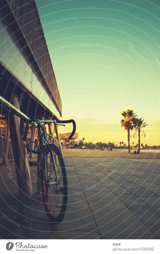 Sommerrad Lifestyle Freude Zufriedenheit Erholung Freizeit & Hobby Fahrradtour Sommerurlaub Strand Fahrradfahren Kultur Umwelt Wärme Küste Stadt Hauptstadt