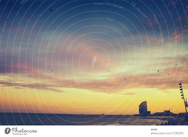 Sonnengruß Himmel Ferien & Urlaub & Reisen Stadt Meer Strand Architektur Gefühle Küste Vogel Stimmung Hochhaus Europa fantastisch Romantik Unendlichkeit Bauwerk