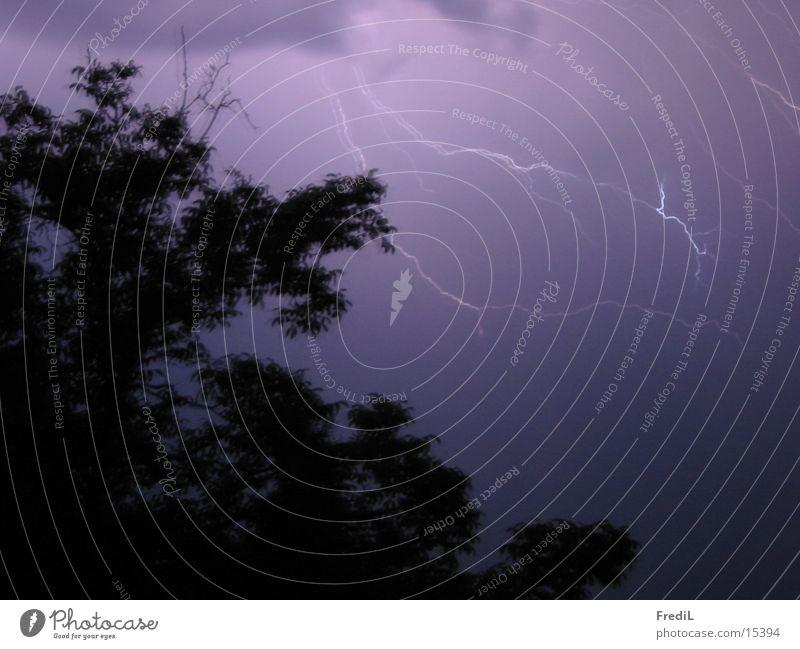 Wetterleuchte dunkel Blitze Baum Gewitter Abend
