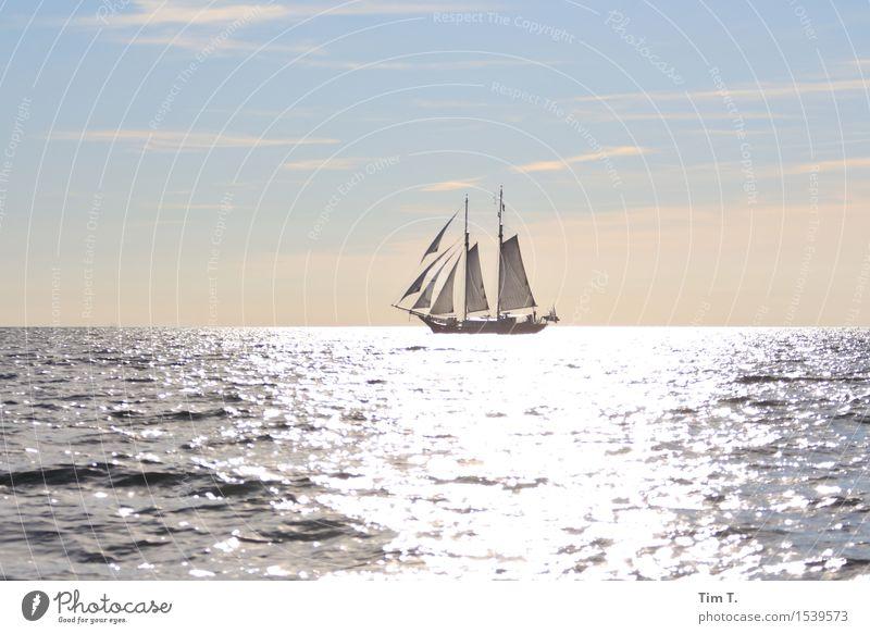 Segeln Ostsee Schifffahrt Bootsfahrt Jacht Segelboot Segelschiff Abenteuer Sonne Horizont Freiheit Wolken Farbfoto Außenaufnahme Menschenleer Textfreiraum links