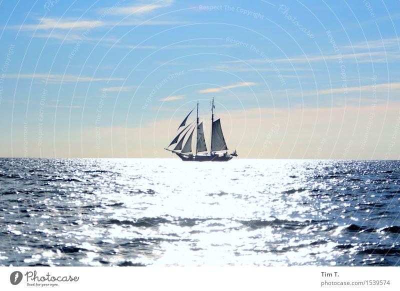 Sailing Umwelt Natur Wasser Himmel Sommer Ostsee Meer Schifffahrt Bootsfahrt Jacht Segelboot Segelschiff Freiheit Farbfoto Außenaufnahme Textfreiraum oben Tag