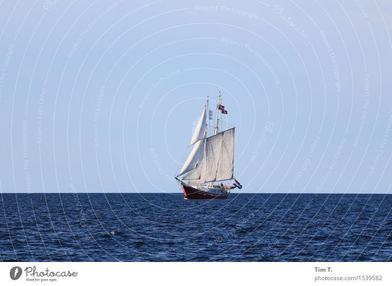 Ostsee Ferien & Urlaub & Reisen Sommer Sonne Meer Ferne Lifestyle Freiheit Wasserfahrzeug Wellen Abenteuer Wolkenloser Himmel Sommerurlaub Schifffahrt Segeln