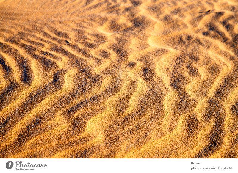 die braune Sanddüne in der Sahara-Marokko-Wüste schön Ferien & Urlaub & Reisen Tapete Natur Landschaft Schönes Wetter Urwald Hügel heiß gelb Einsamkeit Idylle