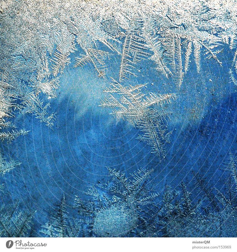Am Tag, an dem die Zeit still stand. Winter kalt Schnee Eis gefroren Mineralien Makroaufnahme Kristallstrukturen Kristalle Detailaufnahme Minusgrade Packeis