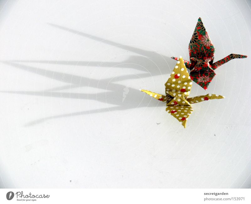 zu zweit fliegt es sich leichter. weiß Tier Paar Vogel 2 Kunst hell Zusammensein fliegen Freizeit & Hobby Papier Punkt Kitsch Falte Asien Handwerk