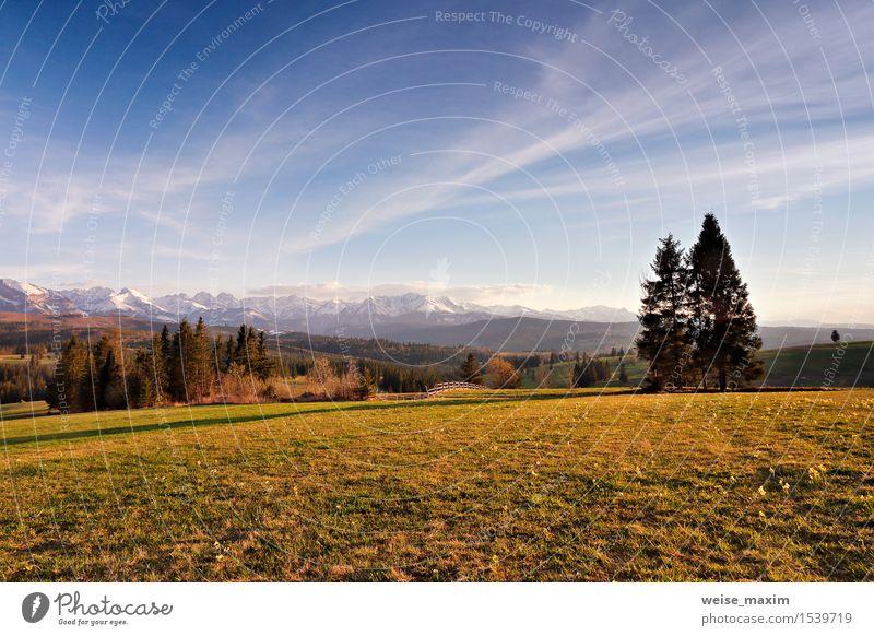 Frühlingslandschaft in Tatras-Bergen, Süd-Polen Himmel Natur Ferien & Urlaub & Reisen schön grün Baum Blume Landschaft Wolken Wald Berge u. Gebirge gelb Blüte