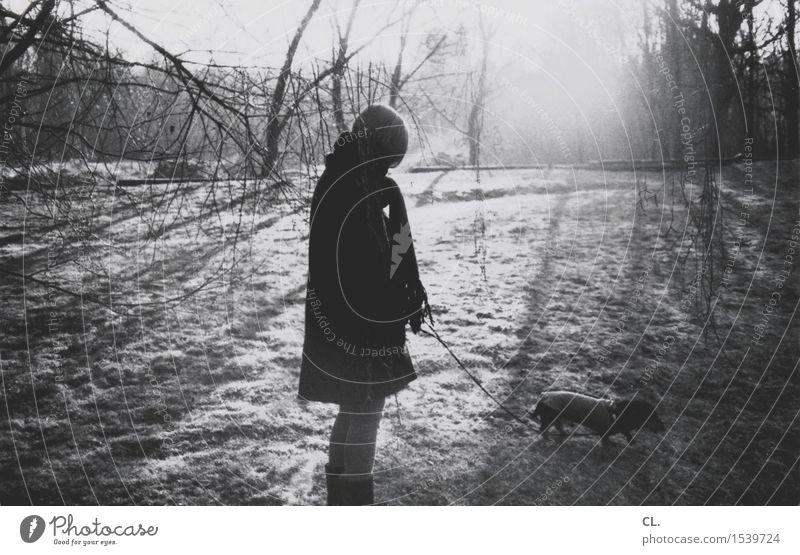frau mit hund Mensch Frau Hund Natur Baum Sonne Landschaft ruhig Tier Winter Wald Erwachsene Umwelt Leben Herbst Wiese
