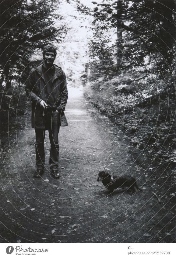 mann mit hund Freizeit & Hobby Mensch maskulin Mann Erwachsene Leben 1 30-45 Jahre Umwelt Natur Herbst Wald Fußgänger Wege & Pfade Tier Haustier Hund Dackel