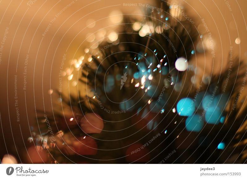 Weihnachten is unscharf? Weihnachten & Advent grün Freude Farbe Hintergrundbild Fröhlichkeit Unschärfe Weihnachtsbaum Freundlichkeit positiv Blendenfleck
