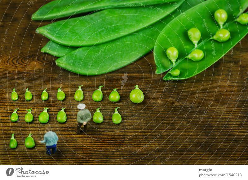 Miniwelten- Die Erbsenzähler Mensch Mann grün Erwachsene Gesundheit Holz Lebensmittel braun maskulin Ernährung Kochen & Garen & Backen Gemüse Bioprodukte Reihe