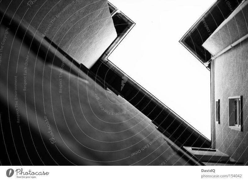 orthochromatisches eck Ecke Hinterhof Block Altbau Haus Stadthaus Fassade Fenster Baum Himmel Detailaufnahme Schwarzweißfoto Orthochrom 25 ASA