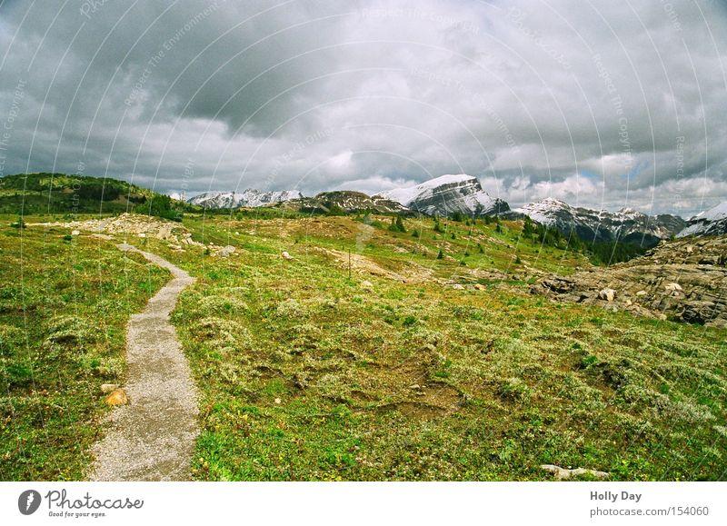Weg in eine ungewisse Zukunft Wolken dunkel Berge u. Gebirge Wege & Pfade wandern Wiese Gipfel Kanada Unwetter Blumenwiese Nationalpark Alberta Bergwiese