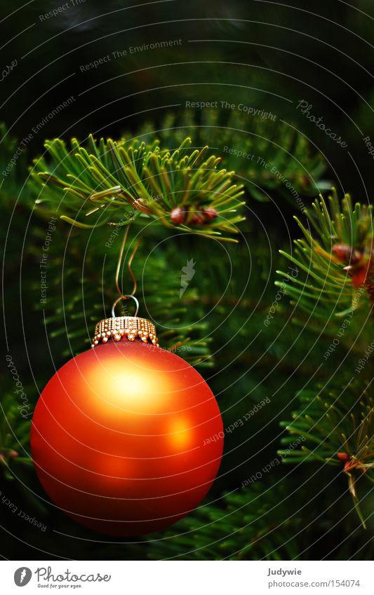 Erinnerung an Weihnachten Weihnachten & Advent grün Winter orange gold rund Weihnachtsbaum Kugel Tanne hängen verschönern Dezember Tannennadel