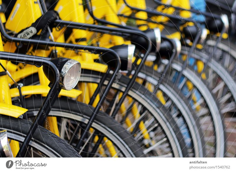 Bicycle bicycle bicycle... Lifestyle Stil Freude Gesundheit Freizeit & Hobby Fahrrad Fahrradfahren Ferien & Urlaub & Reisen Tourismus Ausflug Sightseeing