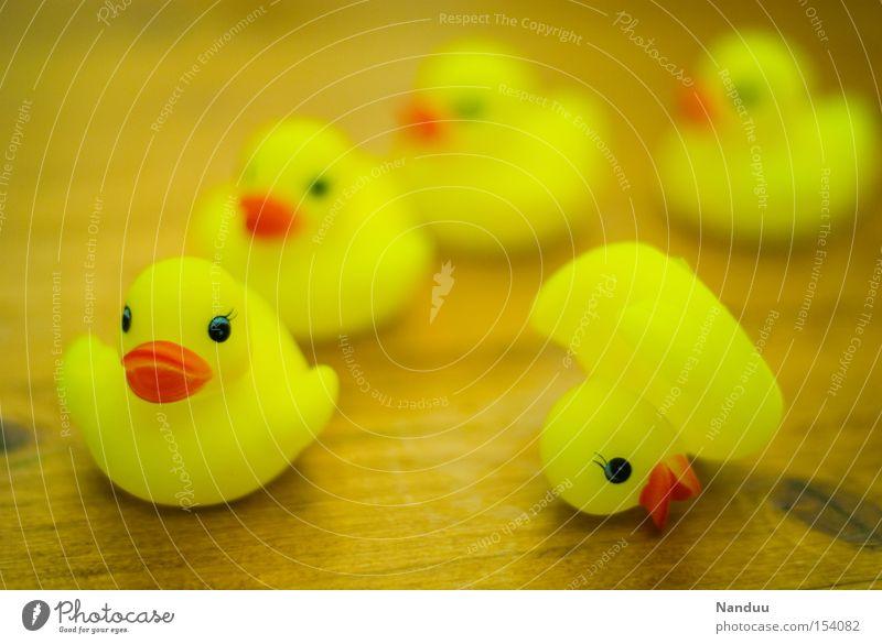 crashed gelb Spielzeug Vogel liegen außergewöhnlich einzigartig Kunststoff Alkoholisiert Tiefenschärfe durcheinander Ente Sportveranstaltung Unfall Konkurrenz