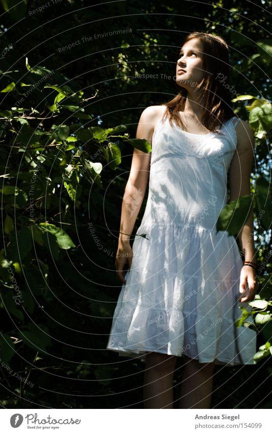 Märchenwald Frau Jugendliche weiß Sommer Blatt Wald feminin Kleid Licht Baumrinde staunen Unterholz