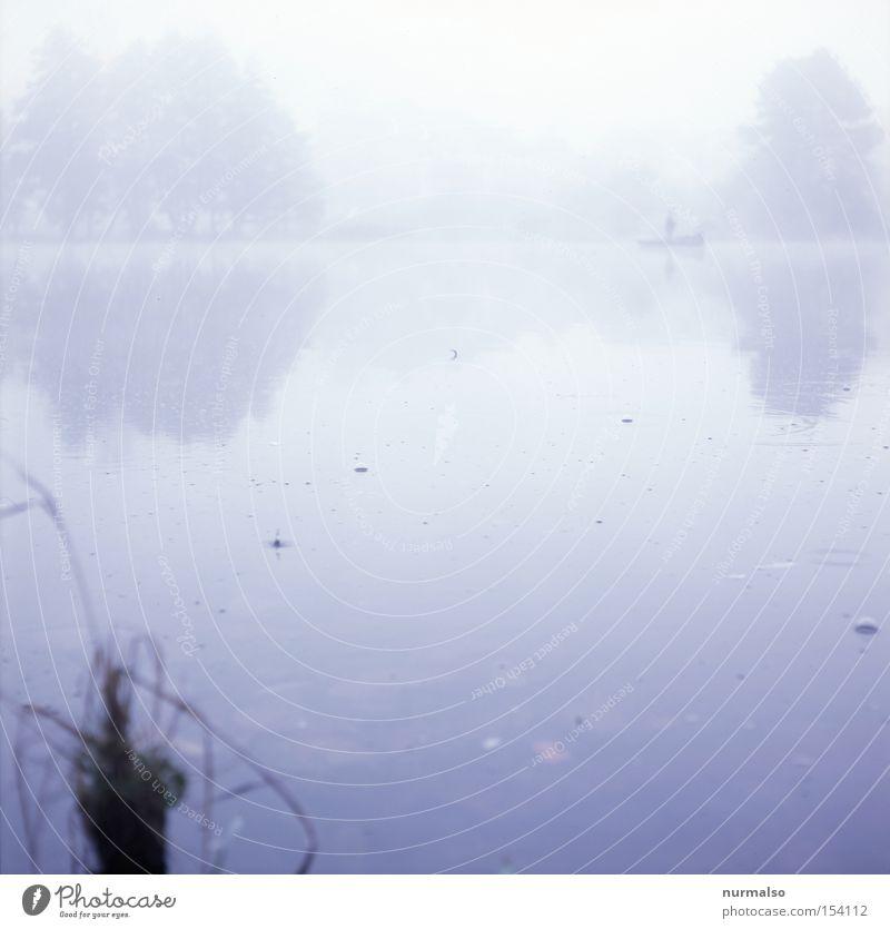 Mystic Morning II Mann Einsamkeit Herbst See Wasserfahrzeug Nebel Wassertropfen Tropfen Sehnsucht Blase Vergangenheit Seeufer Morgen Erzählung Heimat