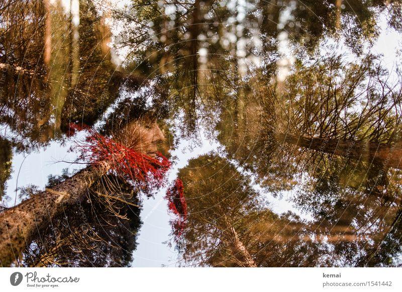 Frau und Bäume - Doppelbelichtung Abenteuer Mensch feminin Erwachsene Weiblicher Senior Leben Gesicht 1 60 und älter Umwelt Natur Pflanze Himmel Sonnenlicht