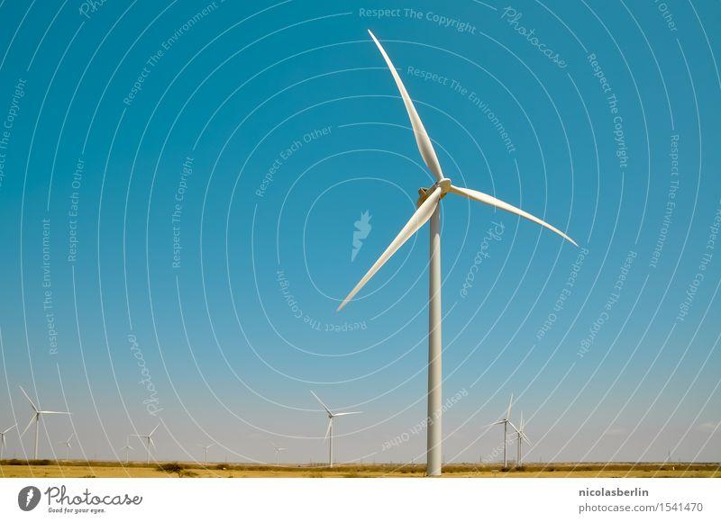 Wind Himmel Landschaft Wärme Umwelt Energiewirtschaft Kraft Technik & Technologie Zukunft Klima Schönes Wetter Industrie Sauberkeit Bauwerk Wolkenloser Himmel
