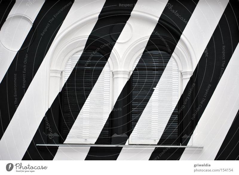 im zebralook schwarz weiß Fassade Graz Fenster Jalousie kalt Architektur geschlossen Zebra Außenaufnahme Bildausschnitt Winter diagonal Detailaufnahme