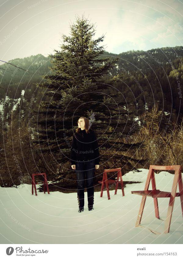 Red Chairs Frau Baum rot Winter Einsamkeit Schnee Stuhl