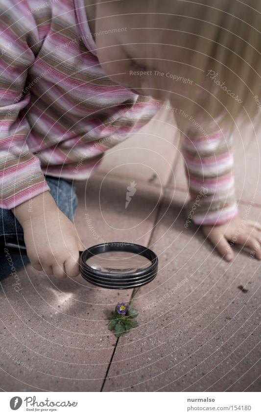 kleiner Entdecker Abenteurer entdecken Lupe Glas Kind Mädchen Neugier Interesse Freude untersuchen Wissen lernen Natur Bildung vergrößert