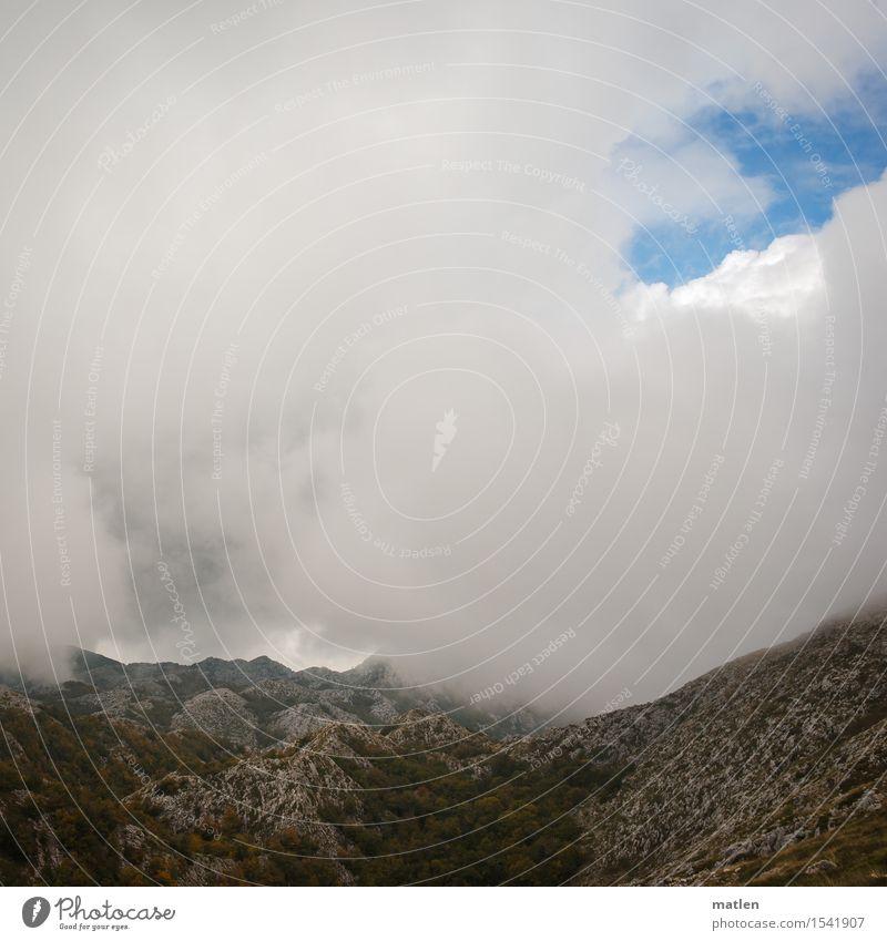 undurchsichtig Natur Landschaft Luft Himmel Wolken Frühling Herbst Wetter schlechtes Wetter Nebel Baum Gras Sträucher Moos Felsen Berge u. Gebirge Menschenleer