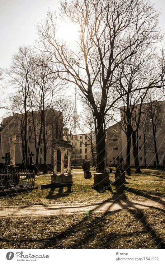 lange Schatten Skulptur Grabmal Säule Berlin Stadt Hauptstadt Haus Park Friedhof Fassade Wahrzeichen Stein dunkel gruselig braun Endzeitstimmung Farbfoto