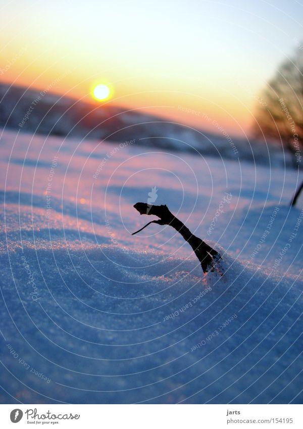 Winterabend Schnee Sonne Sonnenuntergang Abend Abenddämmerung Himmel kalt jarts
