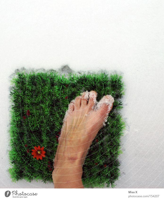 So fing alles an kalt nass Schnee Winter grün Gras Blume Fuß Zehen frieren erfrieren Quadrat Rasen Frühling Barfuß