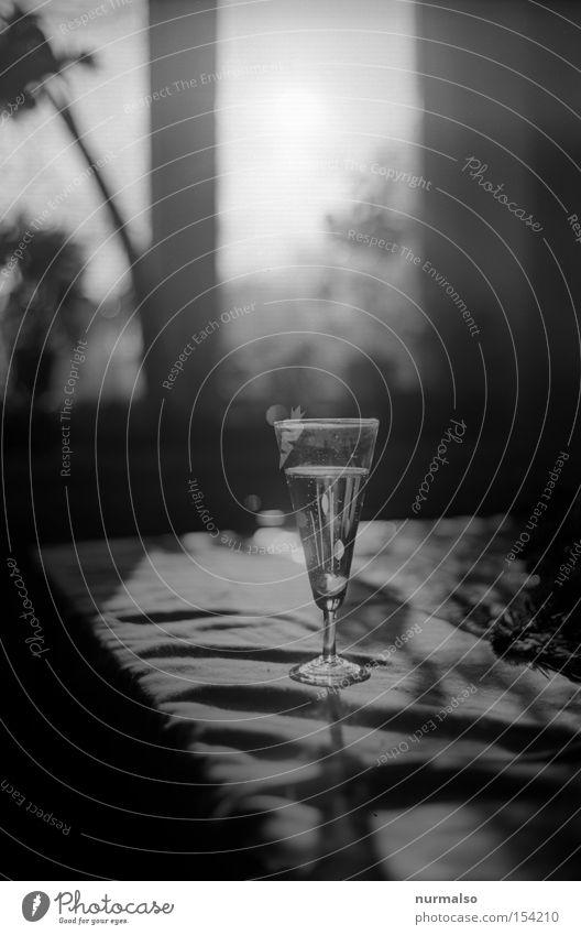 Sprudelwasser danach Sekt Glas Getränk Erfrischung Alkohol Sektglas Gegenlicht Champagner Schwarzweißfoto