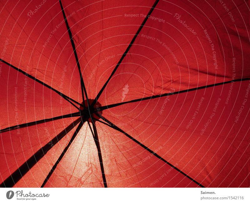 Schirmherrschaft Regenschirm Stimmung Sonnenlicht Sonnenschirm Linie rot Gestell Sommer Schönes Wetter Wärme Schutz Geborgenheit Wetterschutz Farbfoto