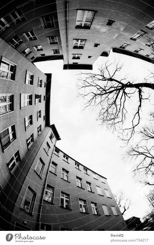 ecke Ecke Hinterhof Block Altbau Haus Stadthaus Fassade Fenster Baum Himmel Fischauge Schwarzweißfoto Orthochrom 25 ASA 16mm