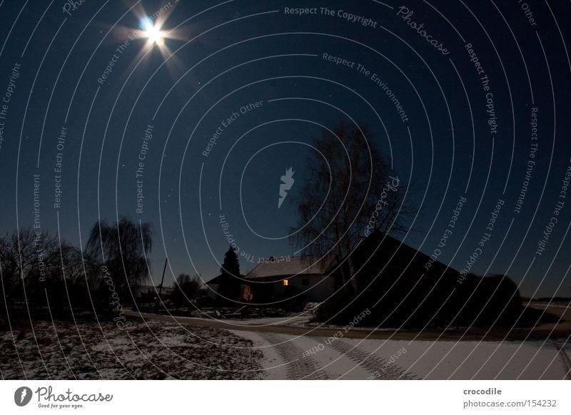 Mondschein Stern (Symbol) Bauernhof Straße Schnee Winter Baum dunkel Romantik Licht Beleuchtung kalt Elektrizität Langzeitbelichtung schön Sternenhimmel