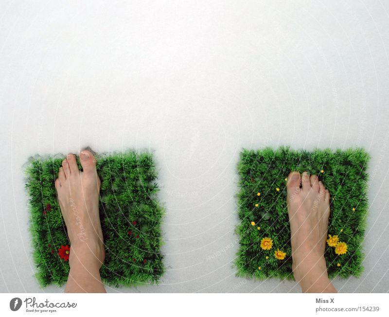 So fing alles an II* grün Blume Winter kalt Wiese Schnee Gras Frühling Fuß Frost gefroren frieren Fleck Teppich Zehen Barfuß
