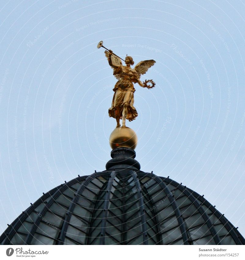 Sur la presse de citron à Dresde Dresden Zitruspresse Kultur Kunst gold Dach Taube Himmel Studium Brühlsche Terrasse Elbe Flussufer Dampfschiff historisch