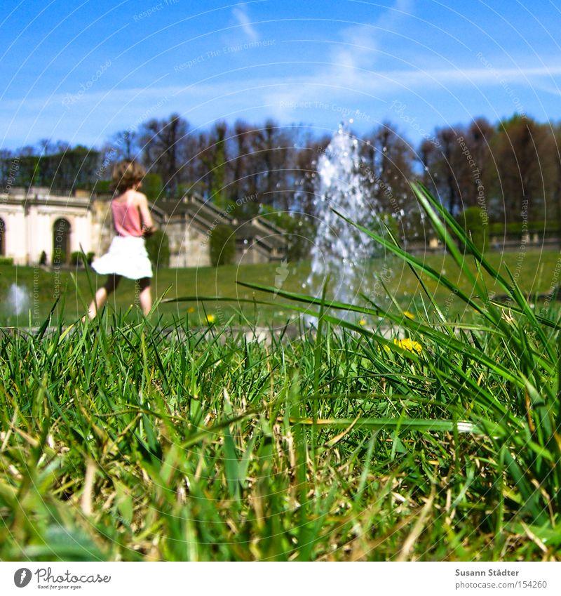 Käferperspektive Himmel Wasser Sommer Tier Wiese Gras Erde Rock krabbeln Barock Springbrunnen