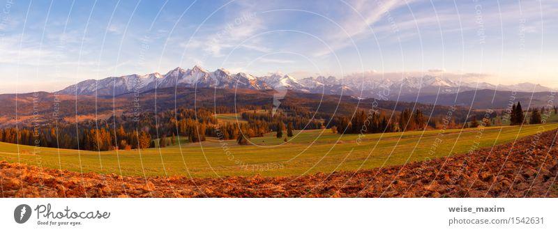 Panorama von schneebedeckten Tatra-Bergen im Frühjahr, Süd-Polen Himmel Natur Ferien & Urlaub & Reisen blau grün weiß Baum Landschaft Wolken Wald