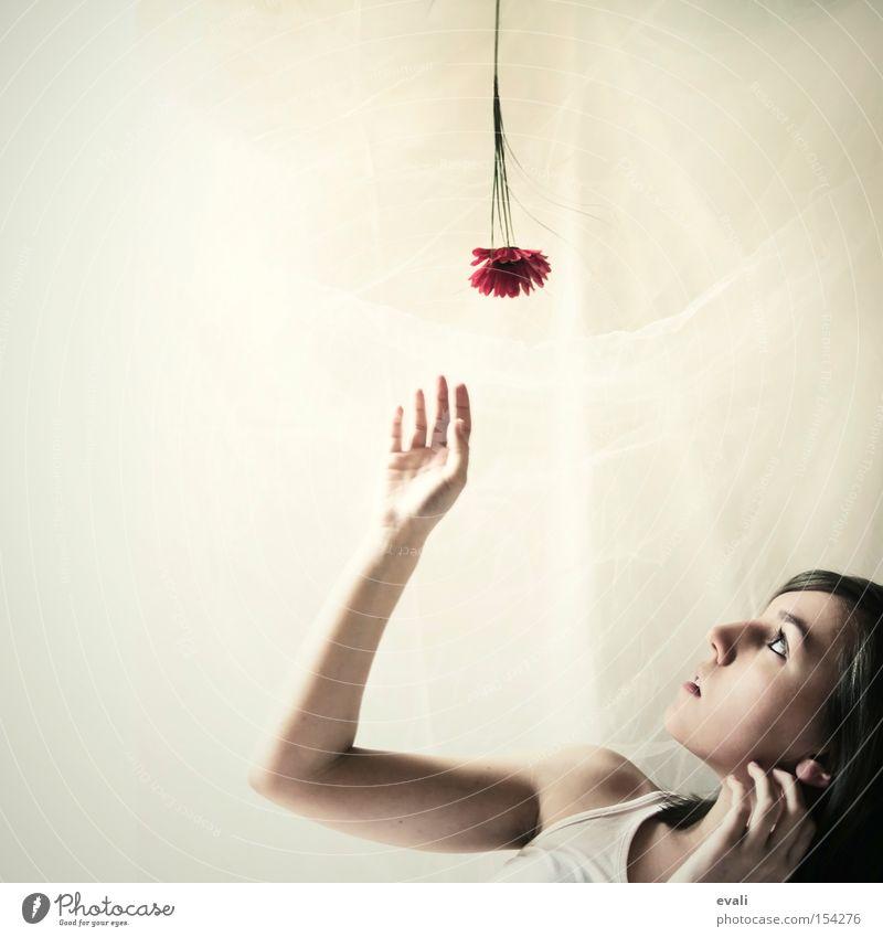 Flowers are red Porträt Blume rot Hand Frau Blick nach oben flower woman fangen
