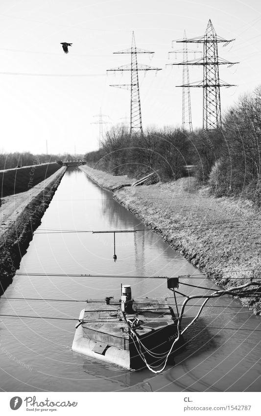 kanal Umwelt Natur Landschaft Wasser Wolkenloser Himmel Schönes Wetter Sträucher Fluss Verkehrswege Schifffahrt Binnenschifffahrt Seil Vogel Strommast