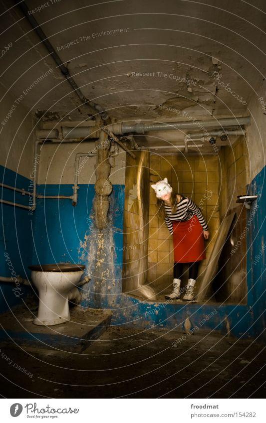 Katzeklo Katze dreckig Sauberkeit Bad Maske verfallen Kot Toilette Toilette Verfall Dusche (Installation) Surrealismus Justizvollzugsanstalt verkleiden Keller Raum